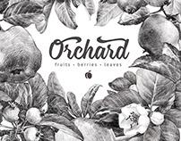 """""""Orchard"""" pattern."""