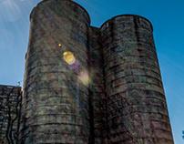 Castle Moo