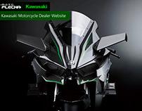 Motoflecha Kawasaki