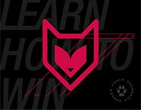 Feisty Fox - Visual Branding