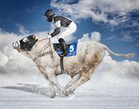 White Turf St. Moritz Switzerland