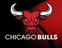 Chicago Bulls Logo concept