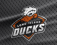 Long Island Ducks Redesign
