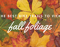 The Best Bike Trails to View Fall Foliage