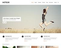 Meteor, WordPress Premium Responsive Retina Theme