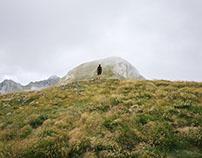 Pyrénées // 01