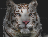 Big Cat Paintings for Endangered Species Awareness