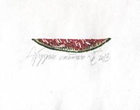 Watermelon seeds / Арбузные косточки