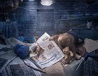 Homeless Wombat