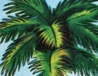 CMF-caribe
