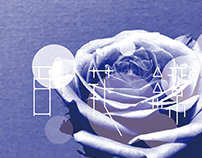Flower Blossom Typography
