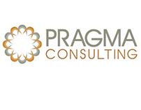 Business Consultant Branding