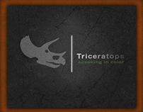 Triceratops Museum Exhibit