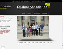 UW-Madison Web Work
