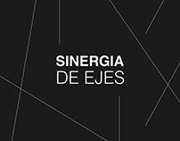Sinergia de Ejes | Fotolibro