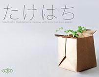 Takehachi - A bamboo paper soil based plant pot.