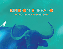 BIRD ON BUFFALO | CD Packaging