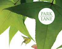 Park Lane Identity and Brochure Design