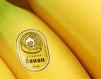 Logo presentation 2016