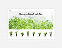 Bylinky — Website ©2020