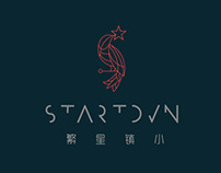 STARTOWN - LOGO Design Concepts