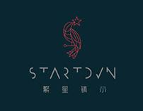 STARTOWN - LOGO Design Concepts