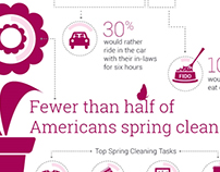 The Dirty Truth: A Home Cleaning Infographic