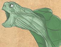 Turtle Infographic