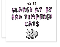 Birthday Revenge Humorous Greetings Cards