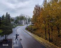 Norwegian Environment Still
