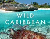 WILD CARIBBEAN A5 flyer