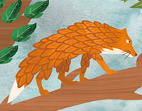 Idiom : A fox with chickens' feather.