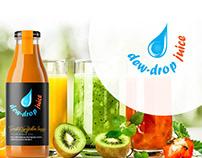 Logo design for juice manufacturer company