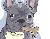 Dobby the Dog