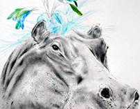 Fancy Hippo