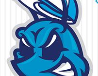 New Hornets Mascot Flip