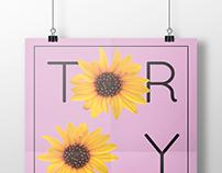 TORO Y MOI // Album Identity Creation