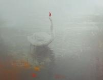 A Swan's Praise