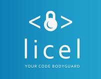 Licel Web-site