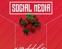 SOCIAL MEDIA - SOSYAL MEDYA