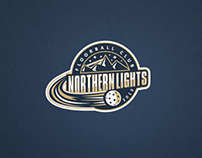 Northern Lights Floorball Club