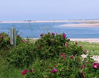 Beach Photographs (taken for real estate website)