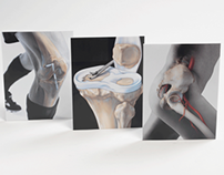 Anatomical Sports Medicine Photo Illustrations