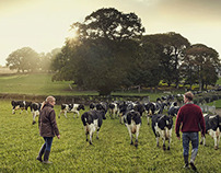 Ulster Bank - Agriculture