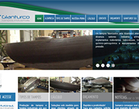 Web site Gianturco