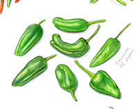 International Hot and Spicy Food Day illustration