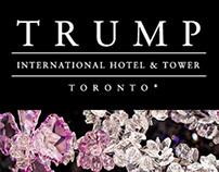 Trump Toronto - Facebook Tile Ads