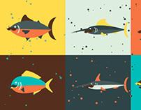 Fish Fish Me