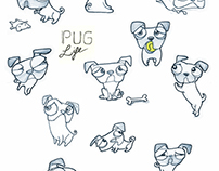 Pug sketches