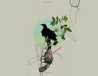 Againts arms: Birdman collage